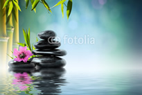 fotolia_51212700