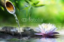 fotolia_70564979